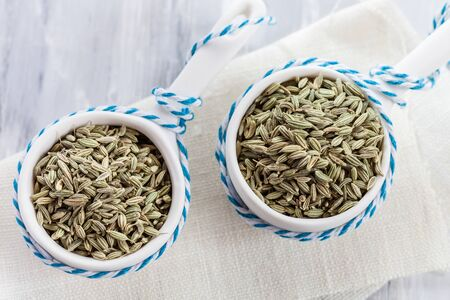 foeniculum vulgare: Fennel seeds (Foeniculum vulgare) in small porcelain bowl