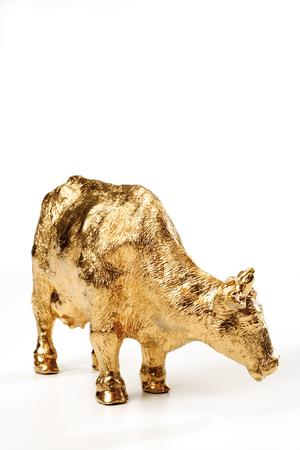 animal figurines: Golden calf, close-up