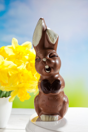 Easter, funny chocolate easter bunny