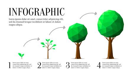Infographic van ecologie laag poly stijl. 4 stappen van de groei van een boom