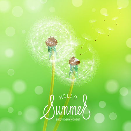 Dandelion Flower Background and Summer Lettering. Vector Illustration EPS10