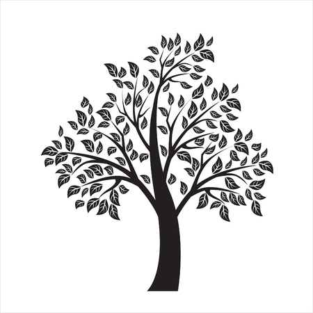 Vector illustration of tree on white background - Illustration Ilustracja