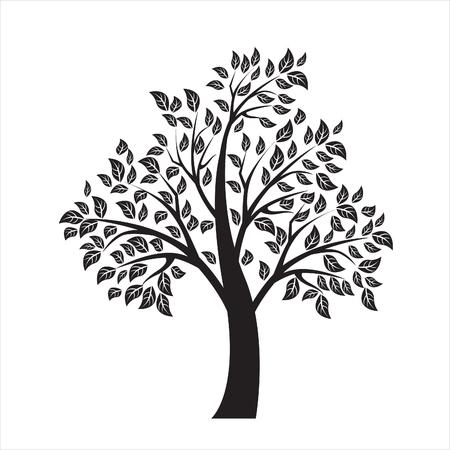 Vektor-Illustration der Baum auf weißem Hintergrund - Illustration Standard-Bild - 47036469