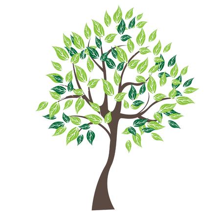 Vector illustration of tree on white background - Illustrationr illustration of tree on white background - Illustration