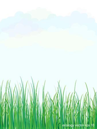 Grass nature flowers Ilustração
