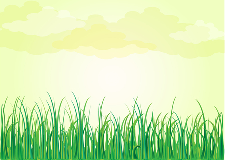 Grass nature flowers Illustration