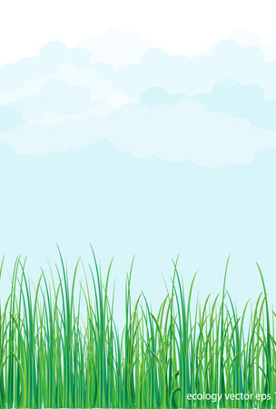 uncultivated: Grass nature flowers Illustration