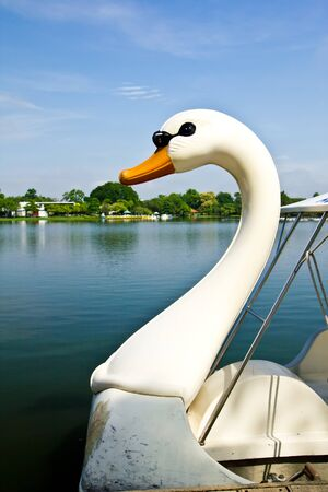 The swan boat photo