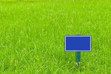 blue label on grass photo