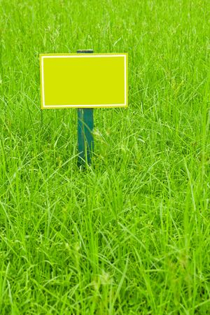yellow label on grass photo