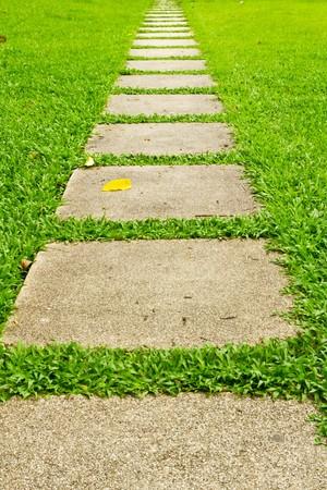 walking stone on grass