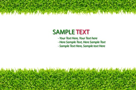 lawn tennis: grass frame on white background