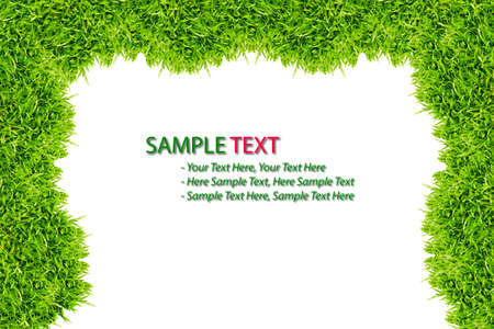 green grass frame isolated on white background Stock Photo - 8375848