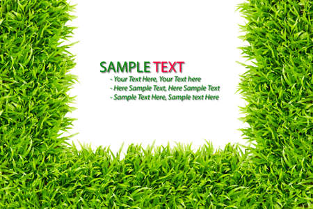 green grass frame isolated on white background photo