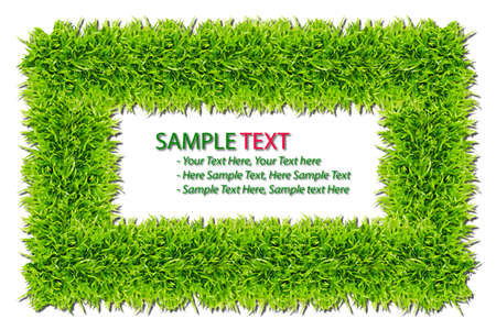 green grass frame isolated on white background Stock Photo - 8375815