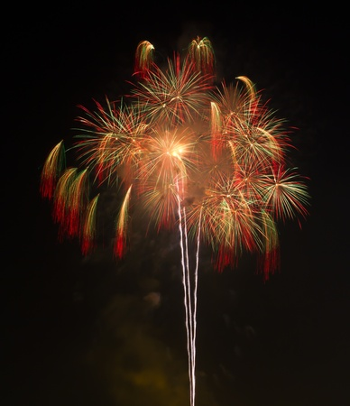 firework in nigth sky photo