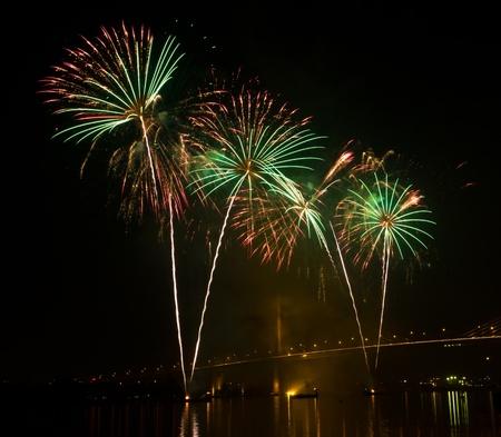 firework in night sky photo
