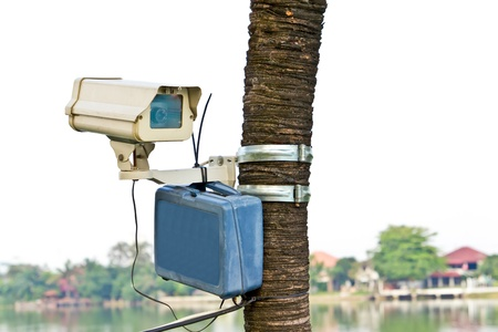 cctv camera on tree Stock Photo - 9218654
