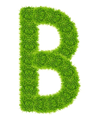 green grass letter B Isolated photo