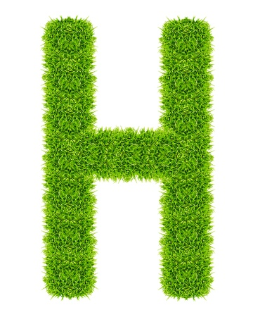 green grass letter H Isolated Stock Photo - 9715248