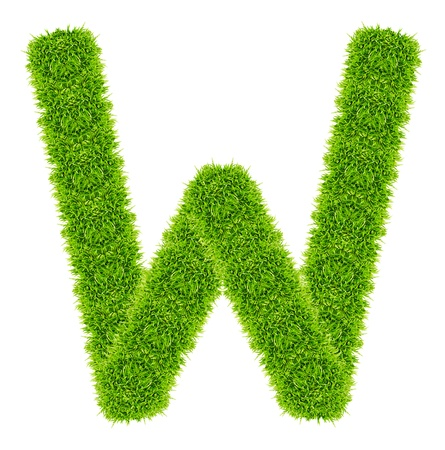 green grass letter W Isolated Stock Photo - 9715257