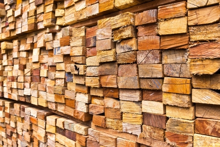 stack of wood logs for background photo