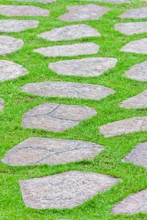 stone path on green grass photo