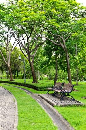 banc de parc: Pr�sident du parc Banque d'images