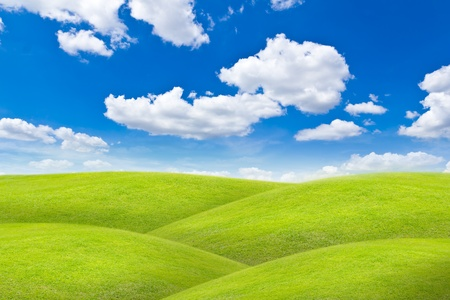meadow against blue sky Stock Photo - 10750487