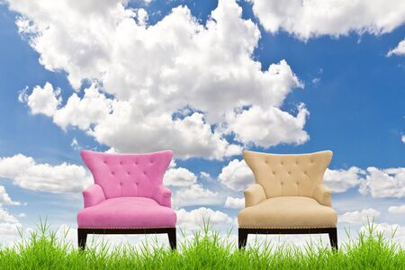 silver grass: pink and cream sofa on green grass against blue sky Stock Photo