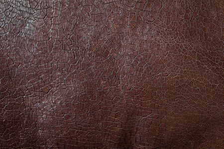 brown leather sofa: texture of brown leather for background