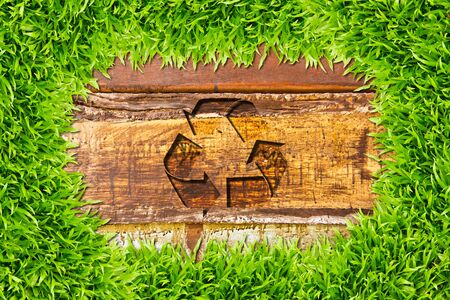 green grass and recycle sign on wood background photo
