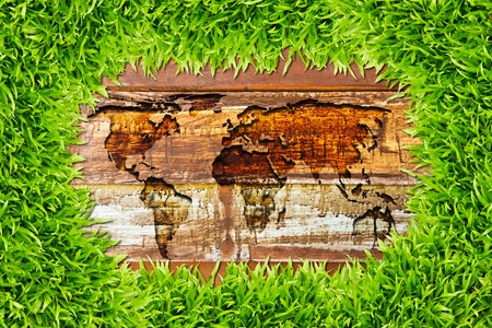 green grass and world map on wood texture photo