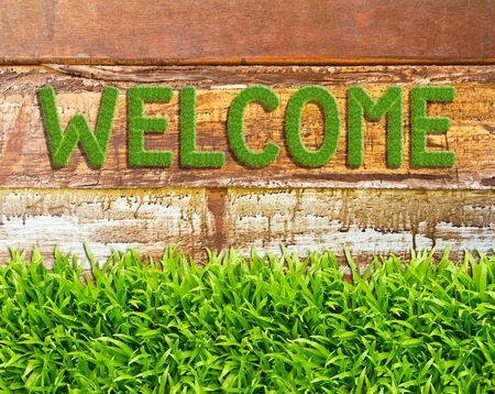 green grass welcome word on wood background Stock Photo - 11561891