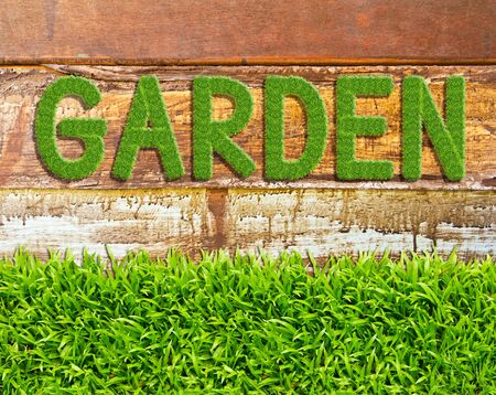 green grass garden word on wood background Stock Photo - 11561895