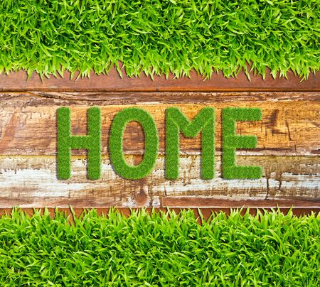 green grass home word on wood background Stock Photo - 11561898