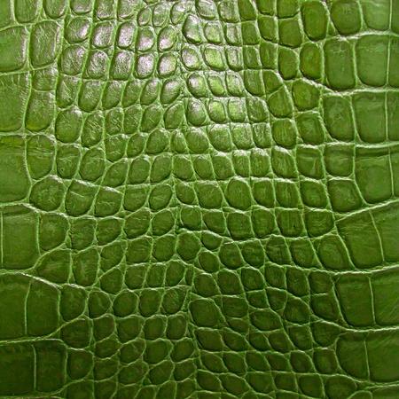 snakeskin: crocodile skin texture Stock Photo