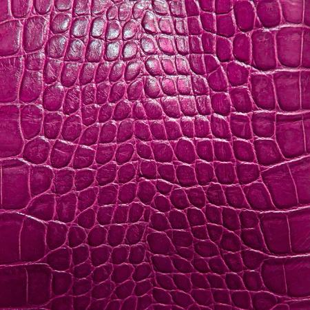Krokodillenleer textuur Stockfoto - 12764720