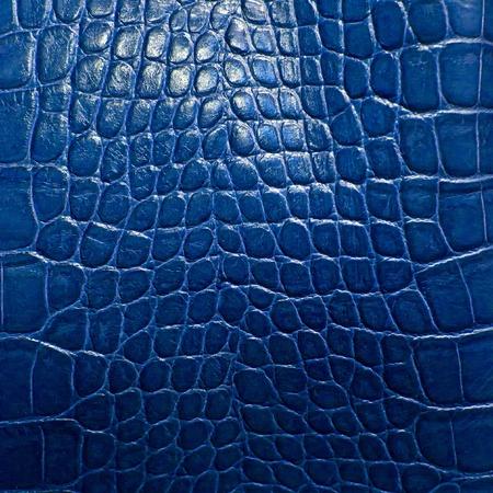 crocodile skin texture Stockfoto