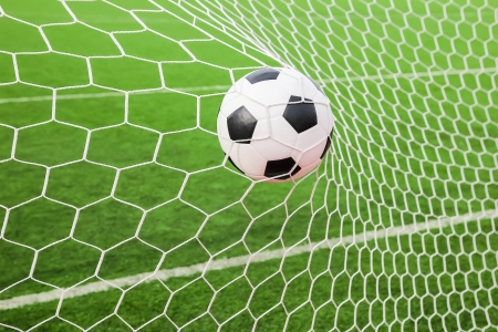 soccer net: soccer ball in the goal net