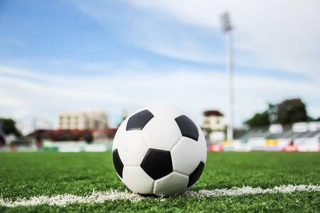 football on green grass Stock Photo - 15757479