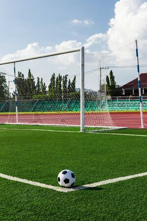 soccer ball on green grass in front of goal net Stock Photo - 16683093