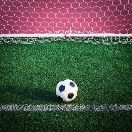 sporting activity: soccer ball on green grass in goal net