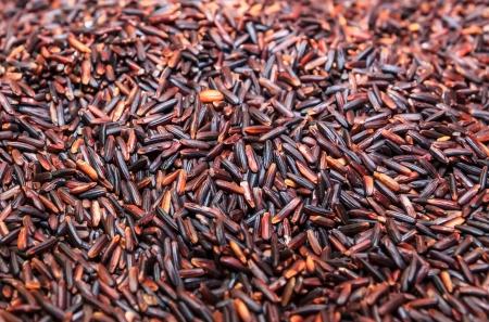 black rice: black rice background