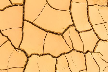 cracked soil photo