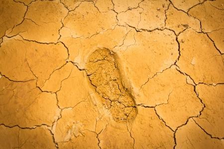 huella pie: huella en suelo grieta seca