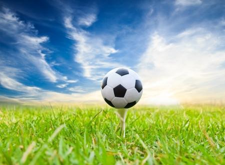 soccer ball on golf tee 스톡 콘텐츠