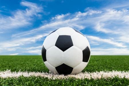 Voetbal op groen grasveld Stockfoto - 20557484