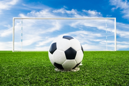cancha de futbol: bal�n de f�tbol en campo de hierba verde