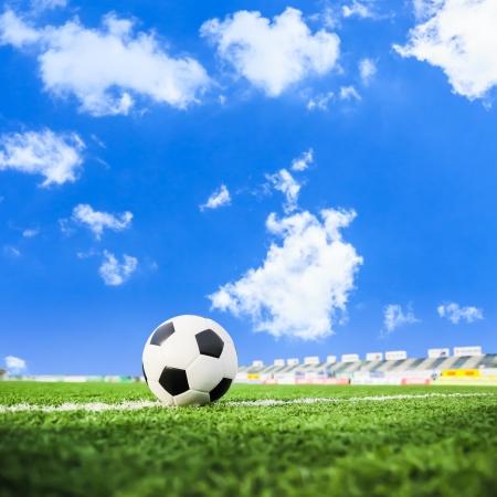 football on green grass Stock Photo - 21806514